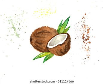 Hand-drawn watercolor cracked coconut isolated on white