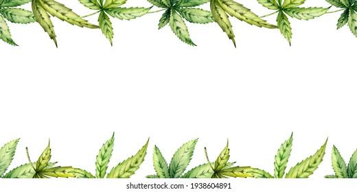 Handdrawn Watercolor illustration. Botanical Art, green hemp leaves. Seamless border