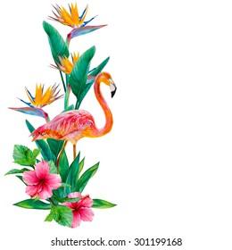 Flamant Rose Dessin Images Stock Photos Vectors