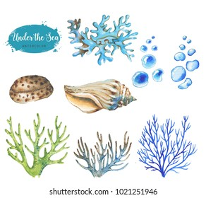 Hand-drawn watercolor illustration of the under the sea. Set of marine objects isolated on the white background