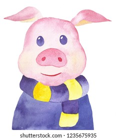 Hand-drawn watercolor sweet little pig in scarf and sweater on w