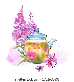 Handmade watercolor fire herbal tea for health. A glass teapot with chamerion tea and a bouquet of medicinal herbs and flowers in the background on a white background. Fireweed.