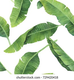 Hand-painted watercolor banana leaves pattern on white background