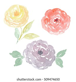 Handpainted watercolor flowers clipart. Watercolor roses collection. Orange, violet and yellow roses illustration