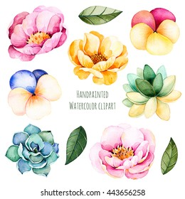 Handpainted watercolor flowers and leaves.10 watercolor clipart with roses,succulent plants,leaves and pansy flowers.Can be used for your unique project,greeting cards,wedding,blogs,patterns,invitation