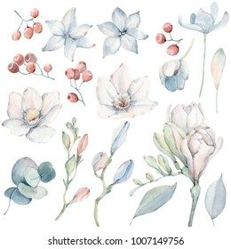Handpainted watercolor flowers set in vintage style. It's perfect for greeting cards, wedding invitation, wedding design, birthday cards. Watercolor botanical illustration isolated on white background