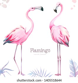 Hand-painted watercolor illustration of pink flamingo isolated on white background. Picture perfect for print, cards, poster, wedding invitations and parties. Trend exotic summer print.