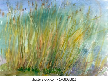 Hand-painted watercolor landscape with reeds