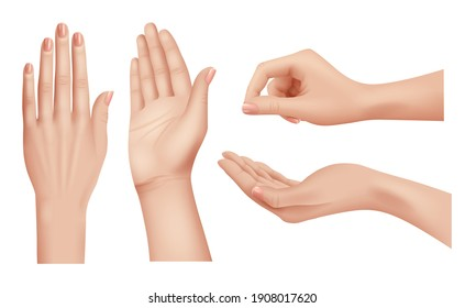 Hands realistic. Gestures human palms and fingers pointing hand people communication language closeup template