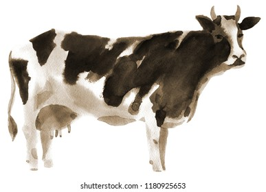 Handwork watercolor illustration of a cow. Sepia