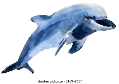 Handwork watercolor illustration of a Dolphin