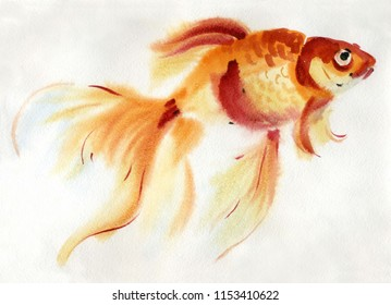Handwork watercolor illustration of a goldfish