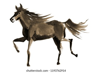 Handwork watercolor illustration of a horse. Sepia