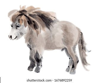 Handwork watercolor illustration of a pony