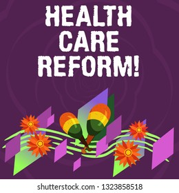 Handwriting text Health Care Reform. Concept meaning general rubric used for discussing major Medical policy Colorful Instrument Maracas Handmade Flowers and Curved Musical Staff.