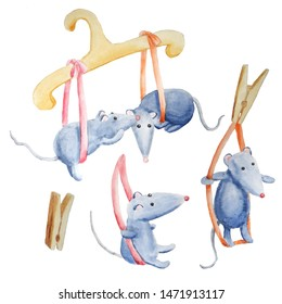 hanger, illustration, bowknot, dry, hold, housework, clothespin, clip, drawing, card, baby, isolated, tail, character, pet, mice, grey, rat, mouse, animal, funny