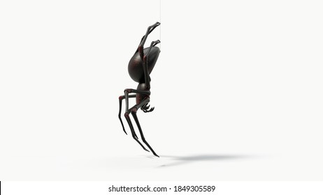 hanging black spider. with red skin details. suitable for horror, halloween, arachnid and insect themes. 3d illustration, side view