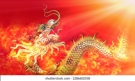 Happy Chinese New Year New Year Greeting Card 3D Illustration Design 2019  And Red Fire Dragon