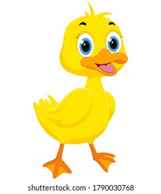 Happy Duck cartoon, isolated on white background