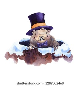 Happy Groundhog Day - hand drawn watercolor illustration character card groundhog