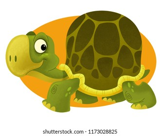 happy slowly turtle