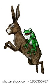 Hare with a happy frog