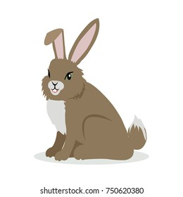 Hare or rabbit cartoon character. Brown hare flat  isolated on white. North America and Eurasia fauna. Rabbit icon. Animal illustration for zoo ad, nature concept, children book illustrating