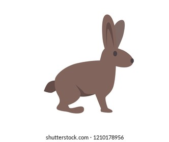 Hare, rabbit. Flat illustration. Isolated on white background. Raster version.