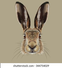 Hare or Rabbit wild animal cute face. Illustrated European hare, Lepus Europaeus funny bunny head portrait. Easter symbol. Realistic fur portrait of forest brown bunny isolated on beige background.