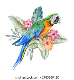 Harlequin Macaw, parrot in tropical leaves and flowers, green parrot sitting on a branch  isolated on white background. Realistic watercolor. Illustrated. Template. Clip art. Hand drawn. Hand painted