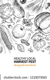 Harvest festival. Hand drawn vintage frame illustration with vegetables, fruits, leaves. Farm Market poster. Vegetarian set of organic products. Detailed food drawing for menu, banner, label, flyer