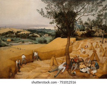 THE HARVESTERS, by Pieter Bruegel the Elder, 1565, Netherlandish, Northern Renaissance oil painting. This is a purely secular and descriptive landscape painting with realist depictions of peasants har