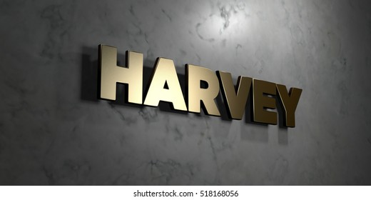 Harvey - Gold sign mounted on glossy marble wall  - 3D rendered royalty free stock illustration. This image can be used for an online website banner ad or a print postcard.