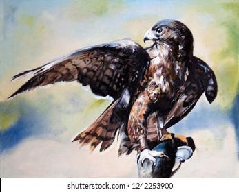 Hawk. Hunting. Oil painting