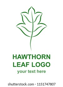 Hawthorn leaf linear icon. Natural, ecological, traditional medicine logo template. Logotype concept for a health, wellness, or medical center. Raster design element isolated on white background.