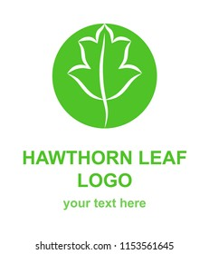 Hawthorn leaf linear icon. Natural,  environmental, traditional medicine logo template. Logotype concept for a health, wellness, or medical center. Raster design element isolated on white background