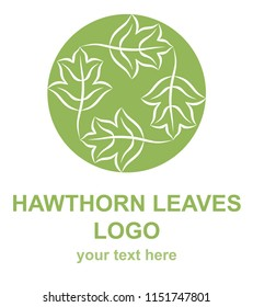Hawthorn leaves linear icon. Natural, ecological, traditional medicine logo template. Logotype concept for a health, wellness, or medical center. Raster design element isolated on white background