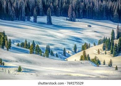 HDR landscape of pine woods by snowy undulant meadow with ski trails on mountain slope in Bridger-Teton National Forest, Wyoming, on a sunny morning early in spring, for themes of the American West