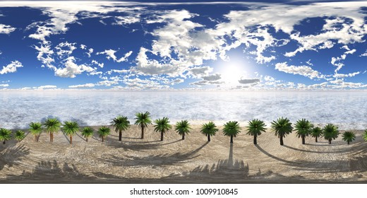 HDRI, environment map, Round panorama, spherical panorama, equidistant projection, Palm trees in a row on a tropical beach 3D rendering