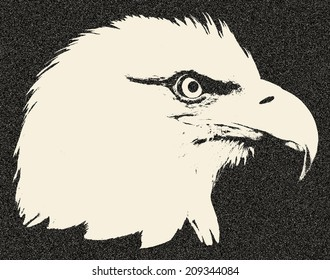 Head of a bald eagle, haliaeetus leucocephalus. Side face portrait of an American eagle, US national character. Great for user pic, icon, label or tattoo. Amazing illustration in grunge style.