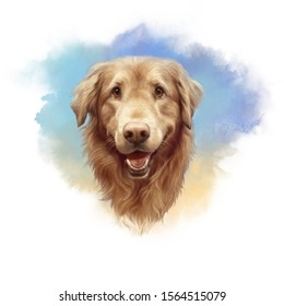 Head of a cute Golden Labrador Retriever on watercolor background. Realistic portrait of a Guide dog. Animal art collection: Dog. Hand Painted watercolor Illustration of Pet. Good for print on T-shirt