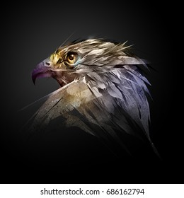 the head of a hawk on a black background