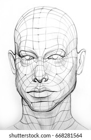 Head of the Person with a 3d Grid.  Wire Model Drawing