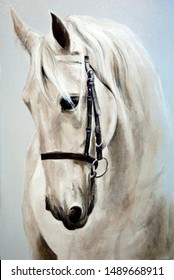 Head in profile a white horse. Oil painting