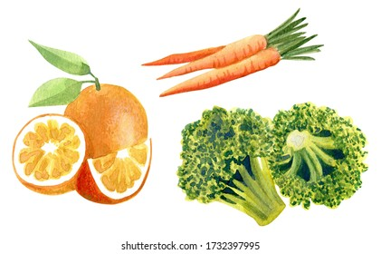 Healthy food illustration with watercolor. Hand made drawings of fruits, vegetables and greens. Diet food. Magazine, poster, card design, menu cover. Food isolated on white.
