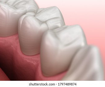Healthy human gum and teeth anatomy. Medically accurate tooth 3D illustration