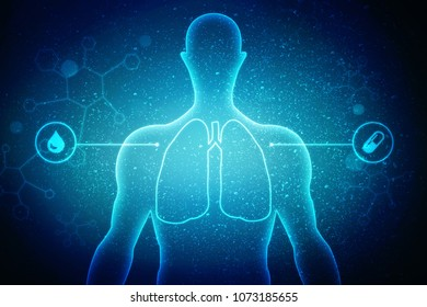 Healthy Human Lungs 2d illustration