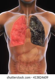 Healthy Lung and Smokers Lung Illustration. 3D rendering