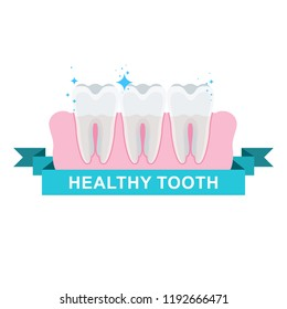 Healthy well-groomed teeth. Dentistry and oral care. Flat cartoon illustration. Objects isolated on white background.