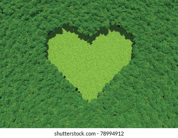 Heart shape in forest